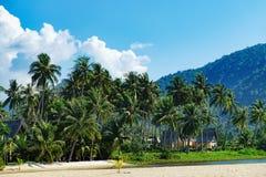 Luxehuis op zandig strand met palmenbomen royalty-vrije stock afbeelding
