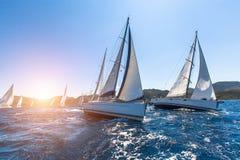 Luxejachten bij het Varen regatta stock foto