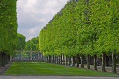 Luxemborg Garden gate line of trees stock image