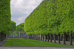 Luxemborg-GartentorBaumreihe stockbild