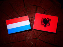 Luxembourg flag with Albanian flag on a tree stump. Luxembourg flag with Albanian flag on a tree stump Royalty Free Stock Image