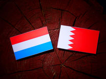 Luxembourg flag with Bahraini flag on a tree stump isolated. Luxembourg flag with Bahraini flag on a tree stump Royalty Free Stock Photos