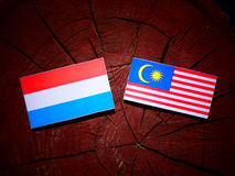 Luxembourg flag with Malaysian flag on a tree stump isolated. Luxembourg flag with Malaysian flag on a tree stump Stock Image