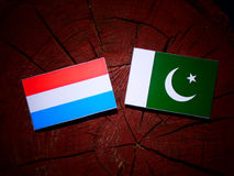 Luxembourg flag with Pakistan flag on a tree stump isolated. Luxembourg flag with Pakistan flag on a tree stump Stock Image
