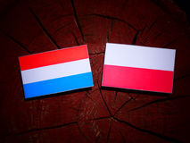 Luxembourg flag with Polish flag on a tree stump isolated. Luxembourg flag with Polish flag on a tree stump vector illustration