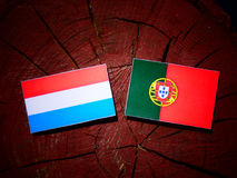 Luxembourg flag with Portuguese flag on a tree stump isolated. Luxembourg flag with Portuguese flag on a tree stump Royalty Free Stock Photos