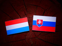 Luxembourg flag with Slovakian flag on a tree stump isolated. Luxembourg flag with Slovakian flag on a tree stump Royalty Free Stock Photos