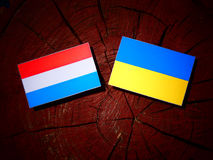 Luxembourg flag with Ukrainian flag on a tree stump isolated. Luxembourg flag with Ukrainian flag on a tree stump Stock Photography