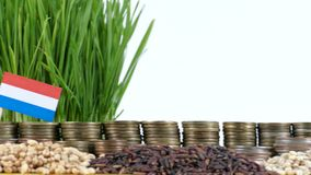 Luxembourg flag waving with stack of money coins and piles of wheat. And rice seeds stock video footage
