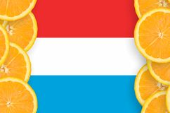 Luxembourg flagga i vertikal ram för citrusfruktskivor royaltyfri foto