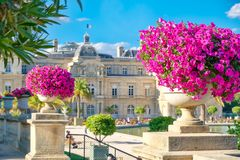 The Luxembourg Garden and Palace in Paris royalty free stock images