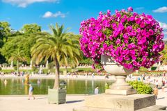 The Luxembourg Garden in Paris. On a beautiful summer day royalty free stock photos