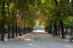 Luxembourg Garden in Paris Stock Photography