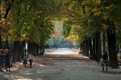 Luxembourg Garden in Paris. Royalty Free Stock Images