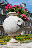 Luxembourg gardens ornamental flowers, Paris Royalty Free Stock Photography