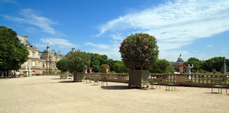 Luxembourg Gardens in Paris. Landscape view of the beautiful Luxembourg Gardens in Paris, France Royalty Free Stock Photography