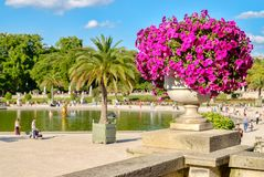 The Luxembourg Gardens in Paris. On a beautiful summer day Stock Images