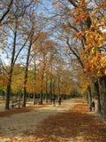 luxembourg parkuje Zdjęcia Royalty Free