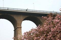 luxembourg passerelleviaduct Arkivfoton