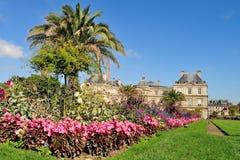 Luxembourg trädgårdar, Paris Royaltyfri Foto