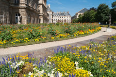 Luxembourg trädgårddetalj, Paris, Frankrike royaltyfri fotografi