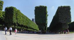 Luxemburg garden in Paris stock image