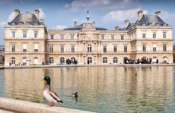 Luxemburg Palace in Paris, France. PARIS, FRANCE-MARCH 26: Luxemburg Palace on March 26, 2014 in Paris. It was originally built to be the royal residence of the Royalty Free Stock Image