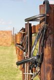 Horse bridle on a fence Royalty Free Stock Photo