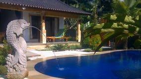 Luxevilla met pool openlucht stock videobeelden