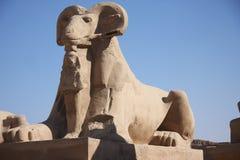 luxor της Αιγύπτου Στοκ εικόνα με δικαίωμα ελεύθερης χρήσης