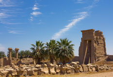 Luxor. A palace under the dark blue sky Stock Images