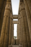 Luxor columns 5. Hugh close lotus columns of Luxor Temple. western side of this courtyard Royalty Free Stock Photos