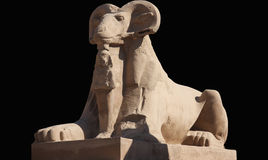 Luxor Egipto Imagem de Stock
