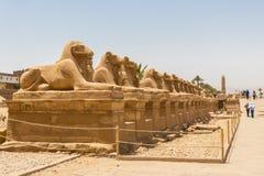 Luxor, Egitto - 16 aprile 2019: Statue nel vicolo delle Sfingi dalla testa RAM davanti al tempio di Karnak a Luxor, Egitto fotografia stock