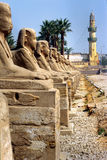 Luxor, Egypte. photographie stock