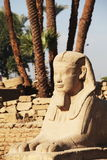 Luxor Stock Photos