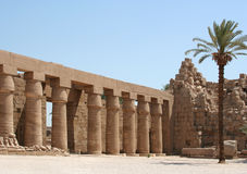 luxor tempel Arkivfoton