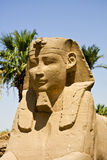 Luxor temple. Details of Egyptian art. An example of the art of the pharaohs Stock Image