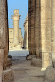 Luxor temple. In Egypt (old Thebes Stock Image