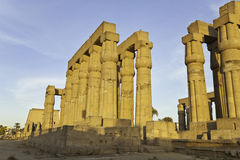Luxor temple Stock Images
