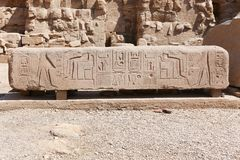 Luxor Temple - Egypt. Luxor Temple at Luxor city - Egypt Royalty Free Stock Photo