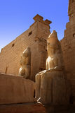 Luxor temple in Egypt. Statue of Ramses at Luxor temple in Egypt Stock Photos