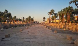 The Luxor temple in Egypt Royalty Free Stock Photo