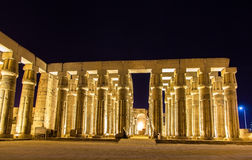 Luxor temple at night Royalty Free Stock Photography