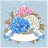 Luxueuze hydrangea hortensia Royalty-vrije Stock Fotografie