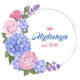Luxueuze hydrangea hortensia en rozen Stock Foto's