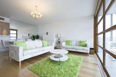 Luxueuze nieuwe gebouwde woonkamer in een penthouse stock afbeeldingen