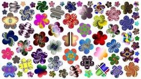 Luxueuze reeks mooie bloemen voor uw ontwerp royalty-vrije illustratie