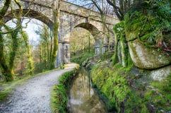 Luxulyan i Cornwall Arkivfoton