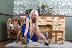 Luxuriöse Blondine in einem weißen Kleid mit einem Hund pekingese stockbild